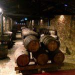 ワインの常識が変わる!ポートワインのワイナリー見学&試飲に行ってみた。
