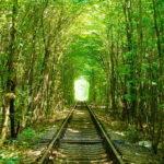 【ウクライナ】愛のトンネルに男一人(しかも2回目)で冬に行ったら。【行き方も解説】