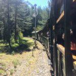 【セルビア】8の字に山を走るレトロな鉄道!シャルガン8(エイト)に乗ってみた。【見どころ、乗車時のアドバイス】