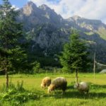 8ヶ月旅した東ヨーロッパ・バルカン諸国。大自然の絶景スポット10選