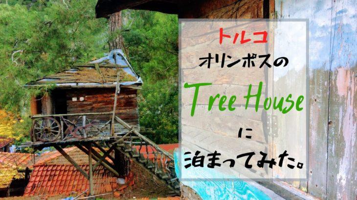 木の上で過ごす休日。トルコ・オリンポスの格安ツリーハウス・ホステルがすごかった。